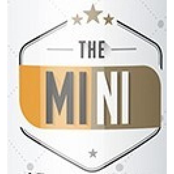 The MINI Nic Salt